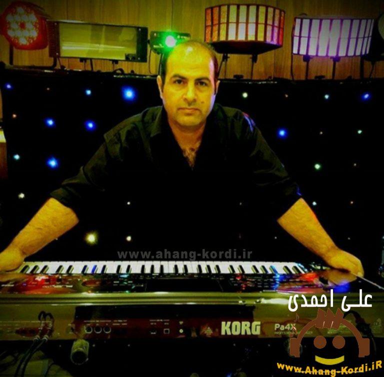 photo 2019 06 01 13 42 34 768x754 - دانلود آهنگ علی احمدی بنام باو روو