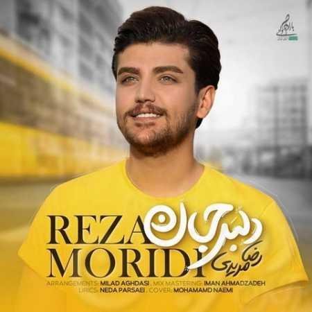 Reza Moridi Delbar Jan www.ahang kordi.ir  - دانلود آهنگ رضا مریدی بنام  دلبر جان